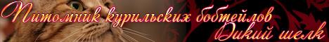Питомник Курильских бобтейлов